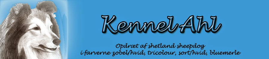 Kennel Ahl
