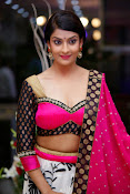 Akanksha latest Glam Pics in Pink-thumbnail-7