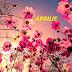 Aspecte astrologice in horoscopul aprilie 2015