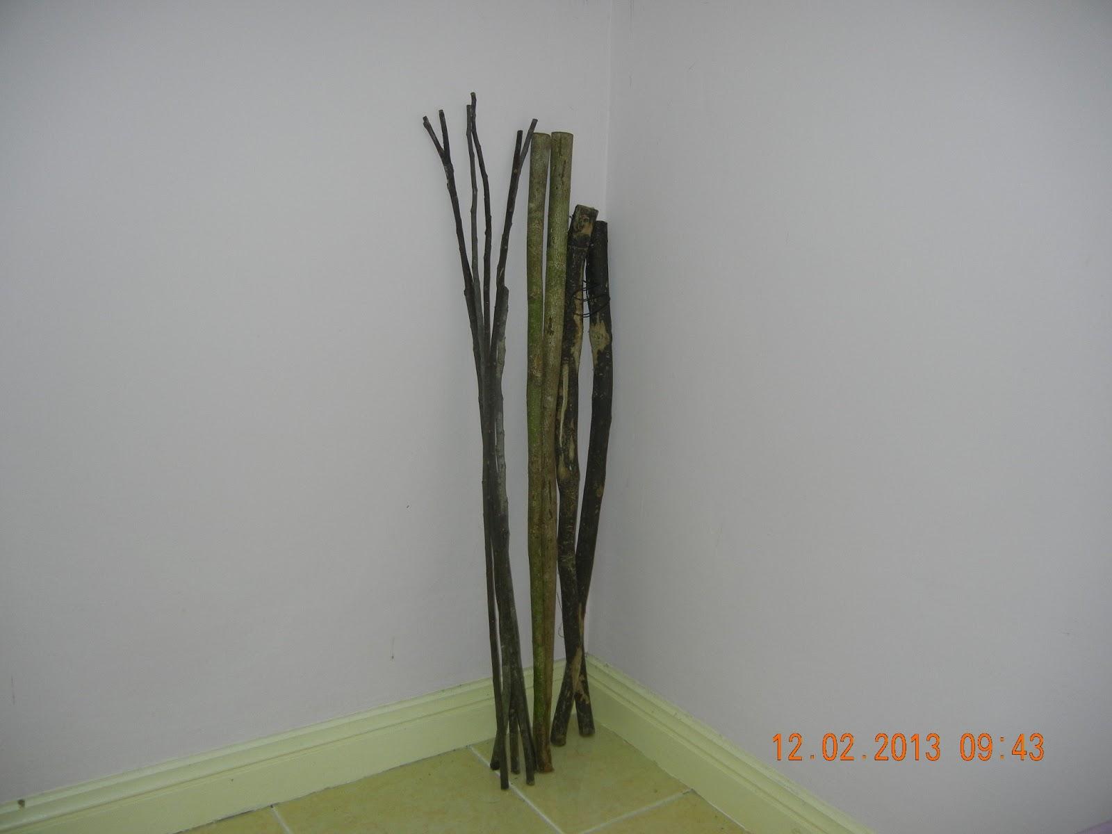 kayu limpanas sabah atau kayu tas hitam dan kayu tas putih memang