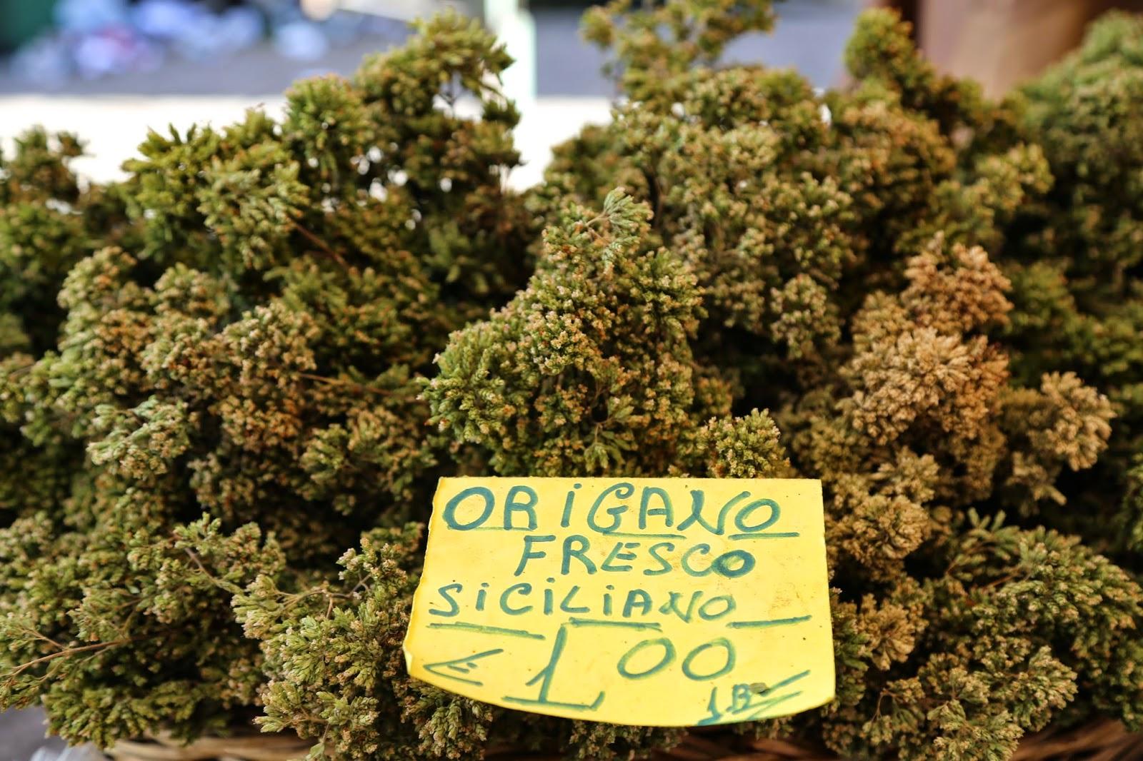 Fresh oregano, Palermo, Sicily
