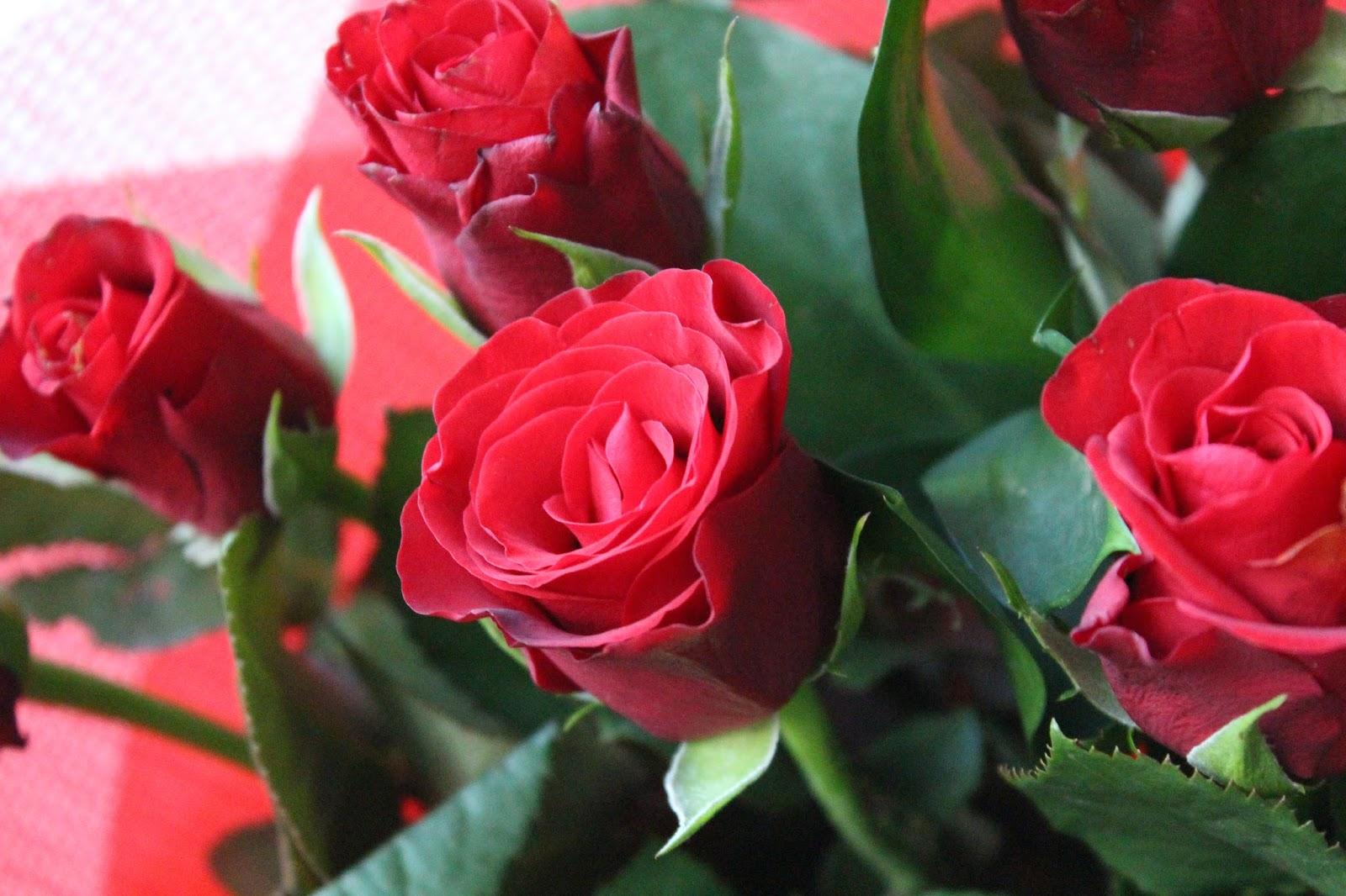 Debenhams Flowers Valentines Gift