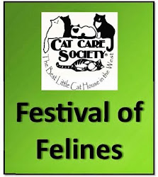 Coming Sat June 29th - Cat Care Society Shelter
