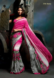 Saree-Designs-2013-14