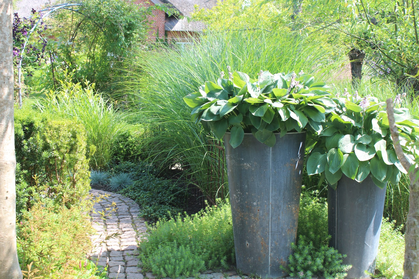 rotkraut: Gartenzaun II...