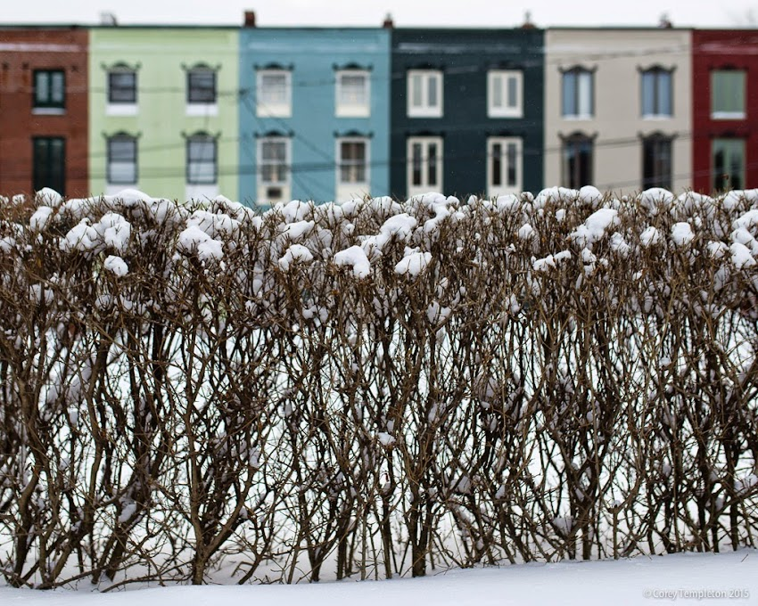 Portland, Maine Winter January 2015 Snow rowhouses Stratton Place in the West End photo by Corey Templeton