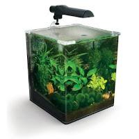 Fluval EBI Nano Shrimp Habitat