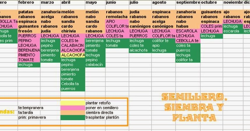 Semillero y siembra huertos mijas - Huerto urbano malaga ...