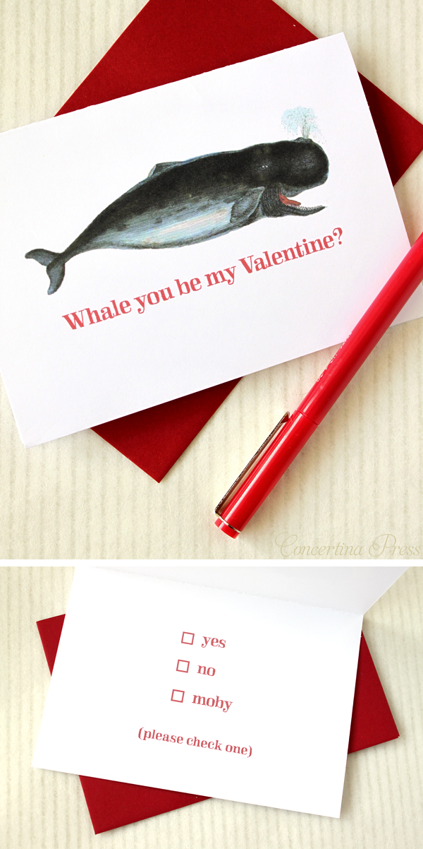 Whale You Be My Valentine Card from Concertina Press