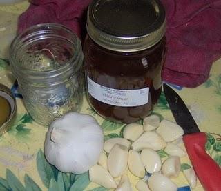 Mind Body Spirit Odyssey: Garlic And Honey: Herbal Remedies With A ...