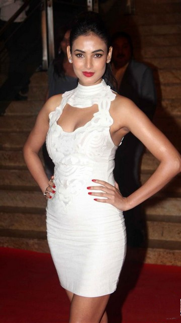 Sonal Chauhan Hot Wallpapers 2013