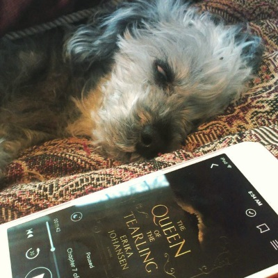 Murchie lays on his side on a red tapestry comforter. His visible eye is almost closed, but the white shows. At an angle in front of him is a white iPod with The Queen of the Tearling's cover on its screen. The cover is indistinct in tones of black and orange, with the title prominently displayed.