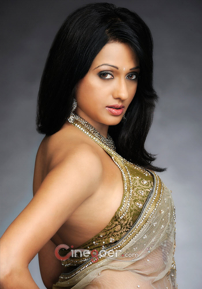 Brinda Parekh in Golden yellow sari - HOt Side view Pose -  Brinda Parekh Saree Pics - Latest April 2012