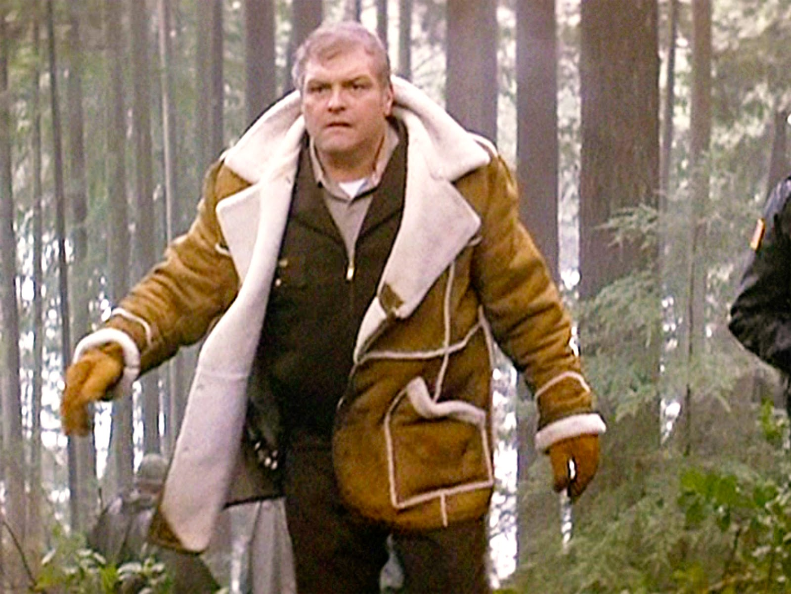 1000+ ideas about Brian Dennehy on Pinterest | Sylvester ...