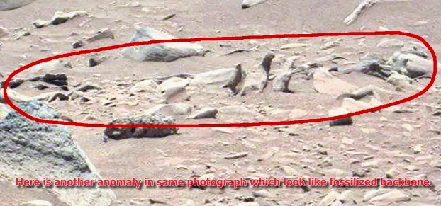 Curiosity Spotted Carved Animal Statue and Strange Artifacts in Mars