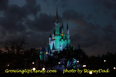growing up disney world cinderella castle