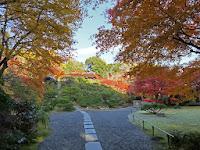 紅葉も鮮やかな、大乗閣の前庭。