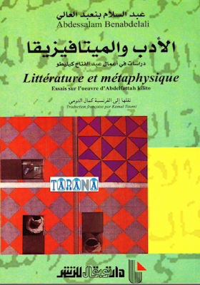 الأدب والميتافيزيقا
