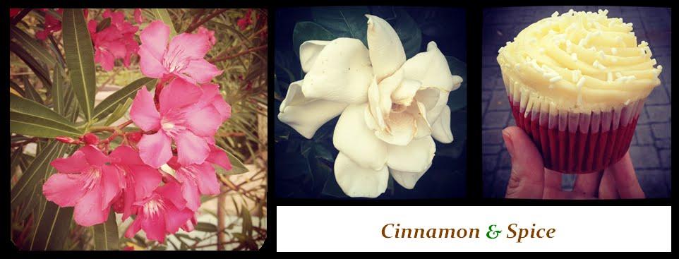 Cinnamon & Spice