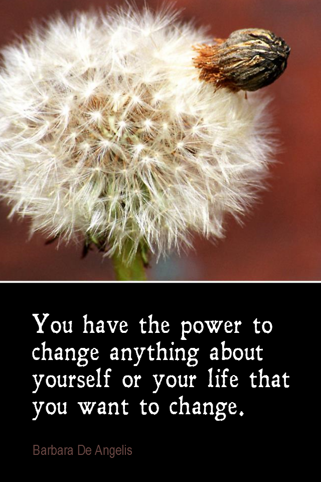 visual quote - image quotation for CHANGE - You have the power to change anything about yourself or your life that you want to change. - Barbara De Angelis