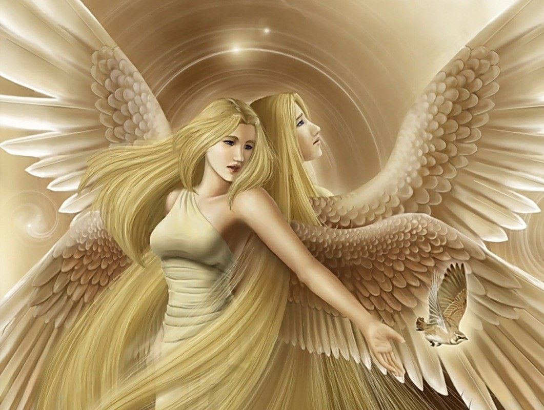 beautiful fairy angel wallpaper beautiful desktop hd