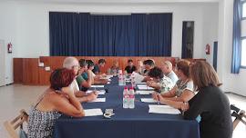 Pleno del Consejo de Ciudadanía.