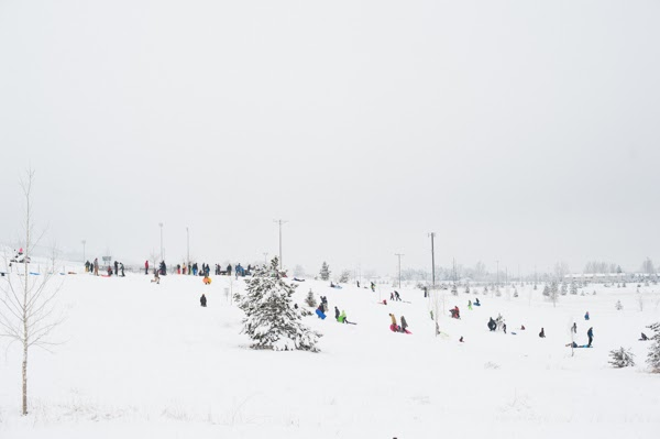 kids and adults sledding in fort collins, colorado