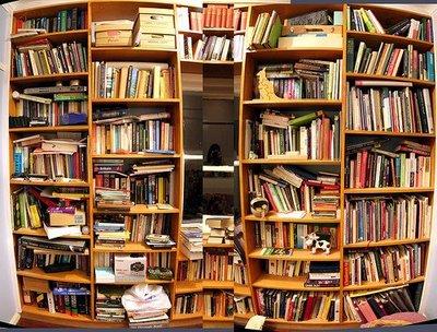 El Secreter Para qu sirve una estantera llena de libros en casa