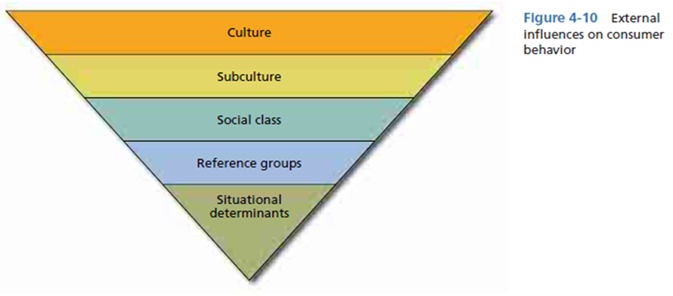 external influences in consumer behavior Organizational buying is much more complex than consumer influence organizational buyers and their buying behavior external environmental factors.