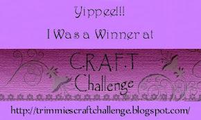 C.R.A.F.T. Challenge #189 Winner
