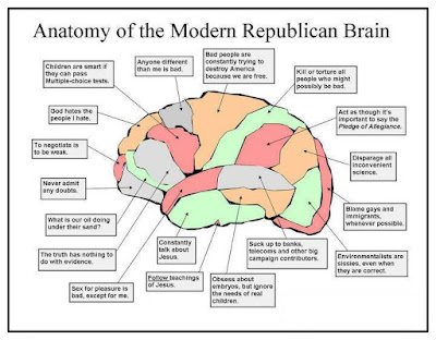 the conservative Republican brain