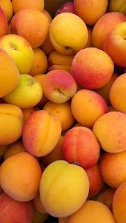L'abricot parmi les remèdes naturels à base de plantes pour traiter l'acné