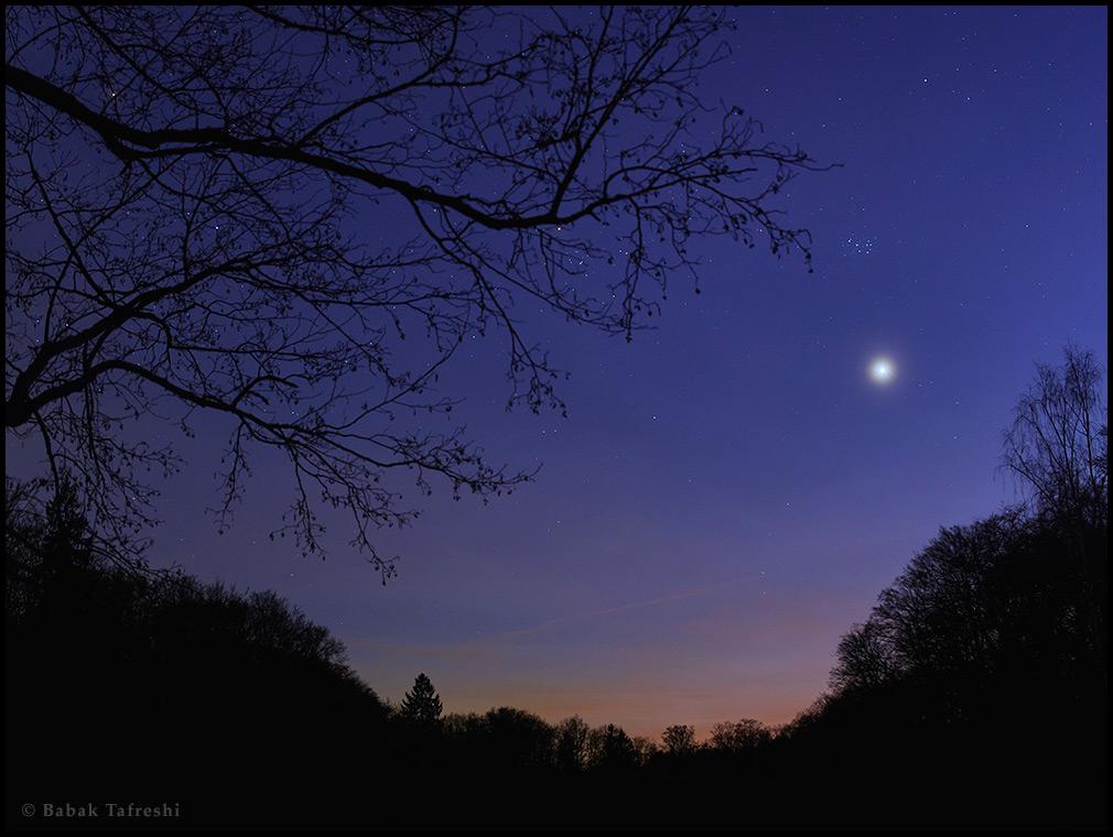 Hành tinh Kim ở hướng tây với cụm sao Pleiades. Tác giả : Babak Tafreshi.