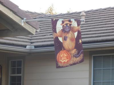 Halloween Banner, ©B. Radisavljevic