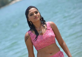 Actress Sunaina Wet Spicy Navel Images