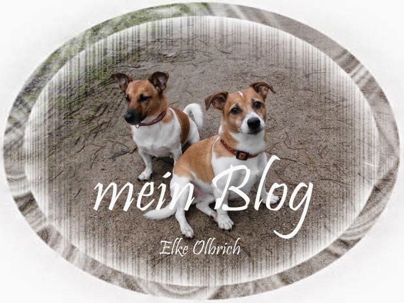 Hier geht es zum meinem Hauptblog