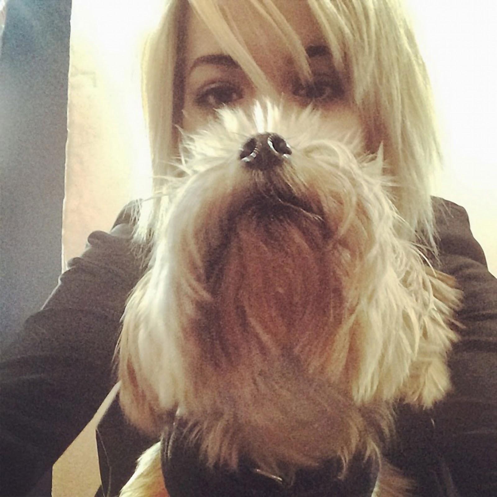 Nueva twipic de Rita Ora con su mascota