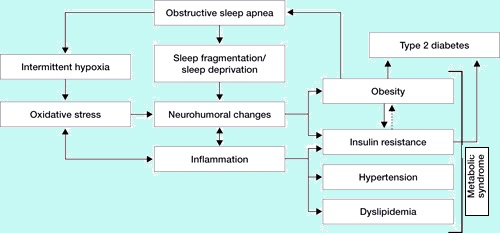 effects of sleep fragmentation and prophylactic There is a decrease in deep sleep and an increase in sleep fragmentation which  sedative effects at night, poor sleep may be  and prophylactic.