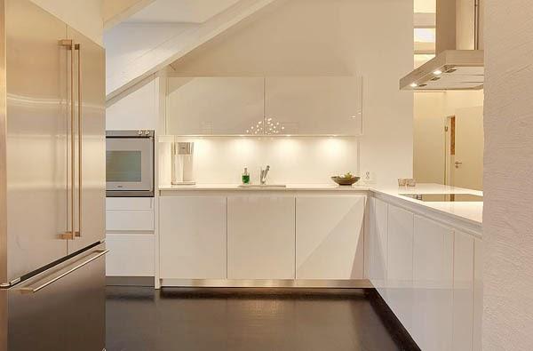 Cocinas con techos inclinados - Moscas pequenas en el techo ...