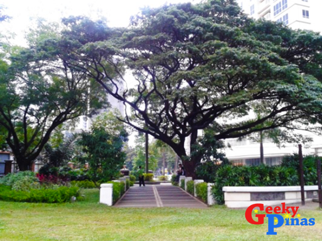 Let's Visit Washington SyCip Park and Legazpi Active Park!