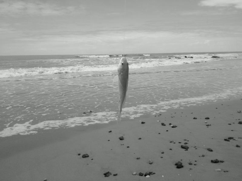 Sexta 28/09/12 Lagoa Doce, São Francisco - RJ 2012-09-28_11-19-11_60