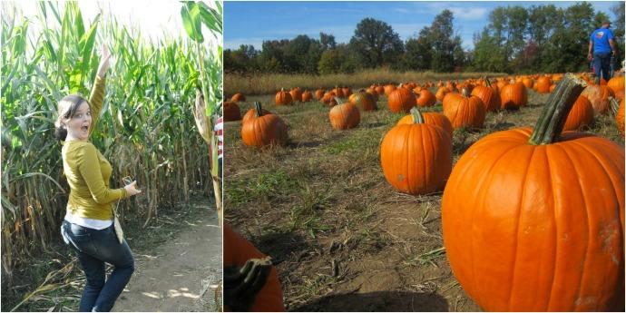 fall-ohio-farm