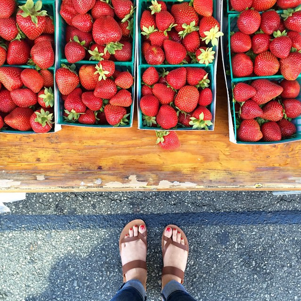 harrys-berries-strawberries-santamonica-farmers-market