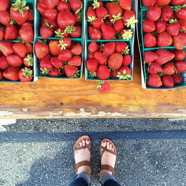 harrys-berries-strawberries-santamonica-farmers-market