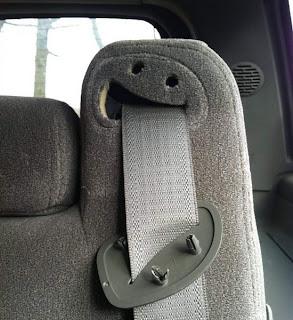¡Ñam! Que ricos están los cinturones de seguridad...