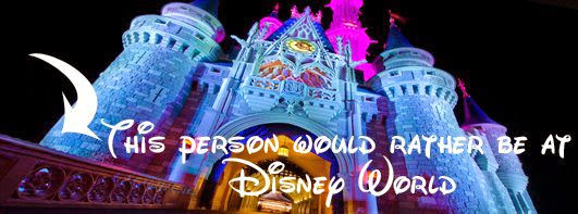 Walt Disney World: Have a Magical Day!