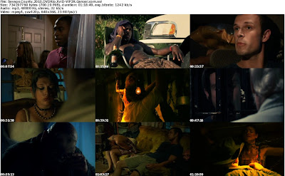 Download Savage County (2010) DVDRip