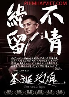 Hoa Hồng Giáng Sinh, Phim Sex Online, Xem Sex Online, Phim Loan Luan, Phim Sex Le