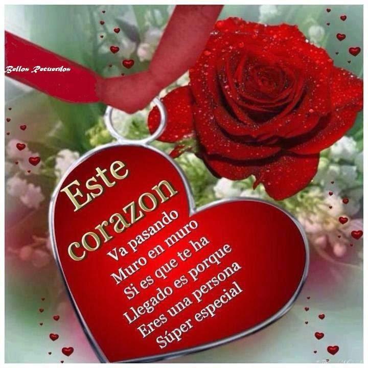 amor,sentimientos,pareja,frases,poemas,lindas,