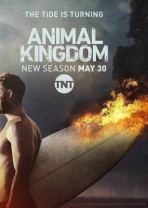 Animal Kingdom - 2ª Temporada Torrent
